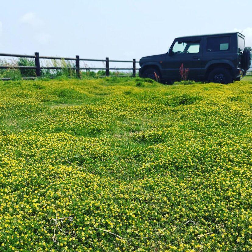 島根鼻公園オートキャンプ場(島根県・西ノ島)