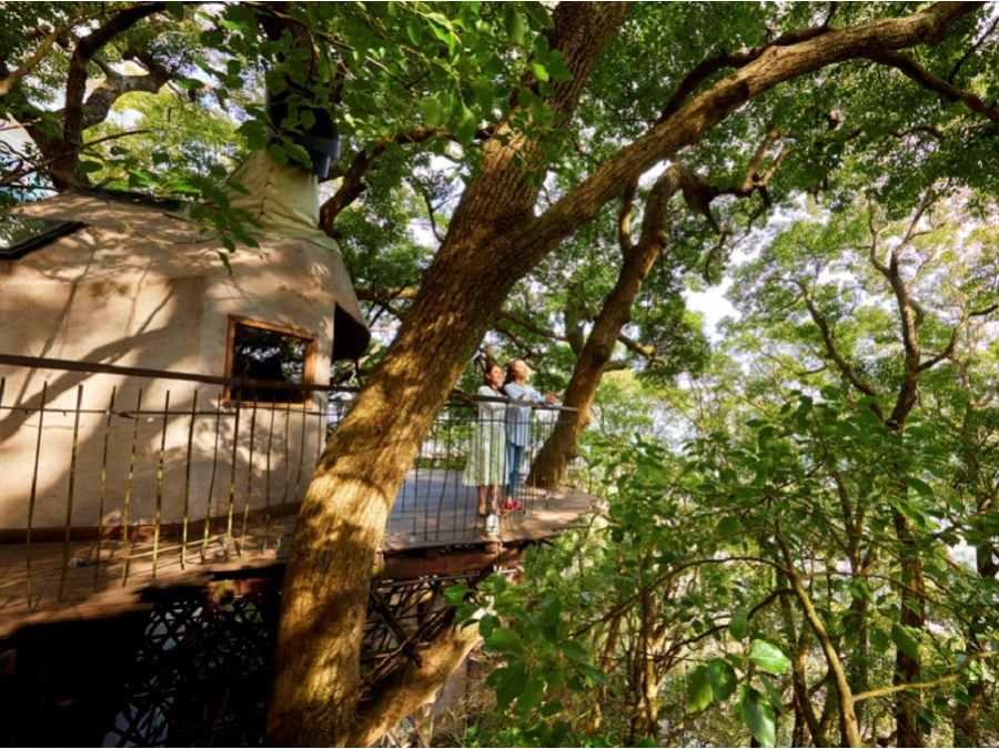 5.森の空中基地くすくす(静岡県)
