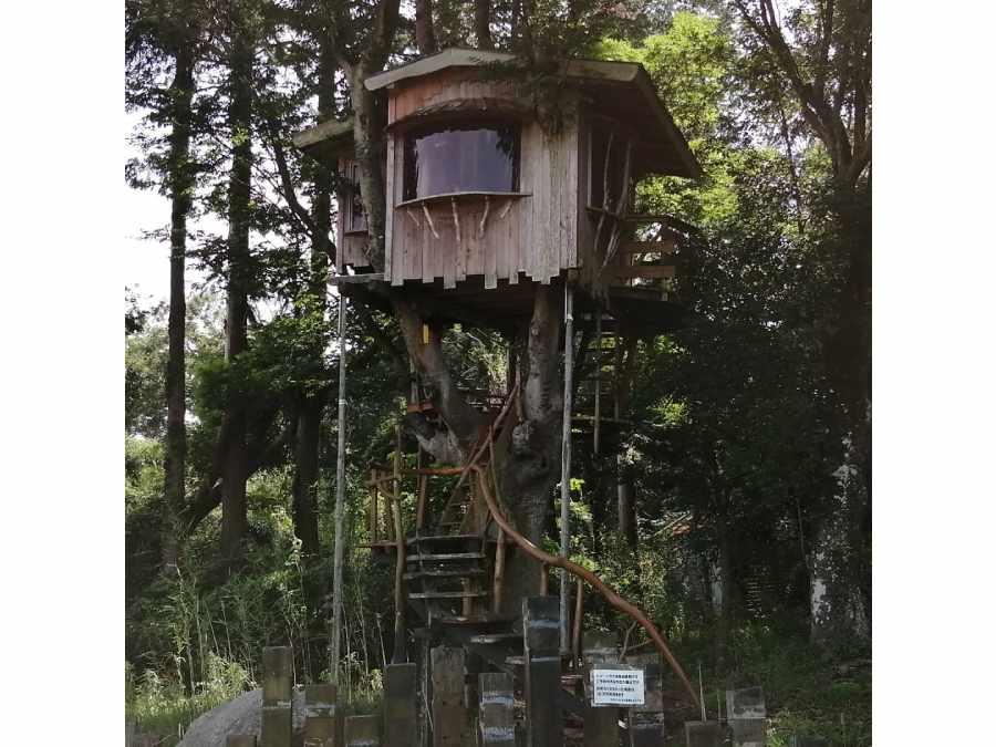 4.ホウリーウッズ久留里キャンプ村(千葉県)