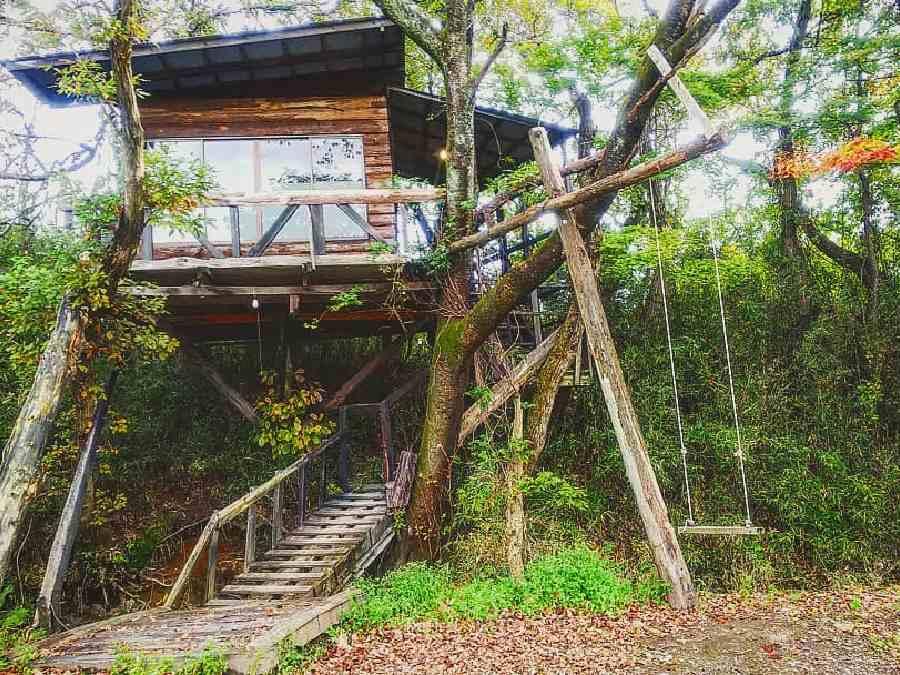 3.ツリーハウスvillageおだぎりガーデン(栃木県)
