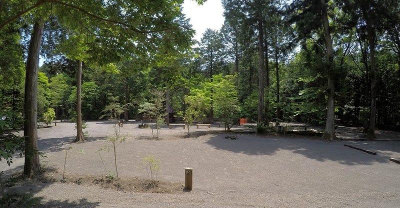 Foresters Village Kobitto Asagiri Camp Field (旧 猪の頭オートキャンプ場),静岡県,サイトの様子